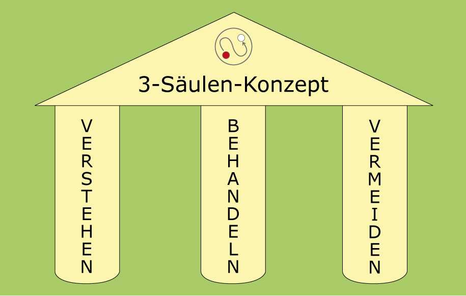 3-Säulen-Konzept